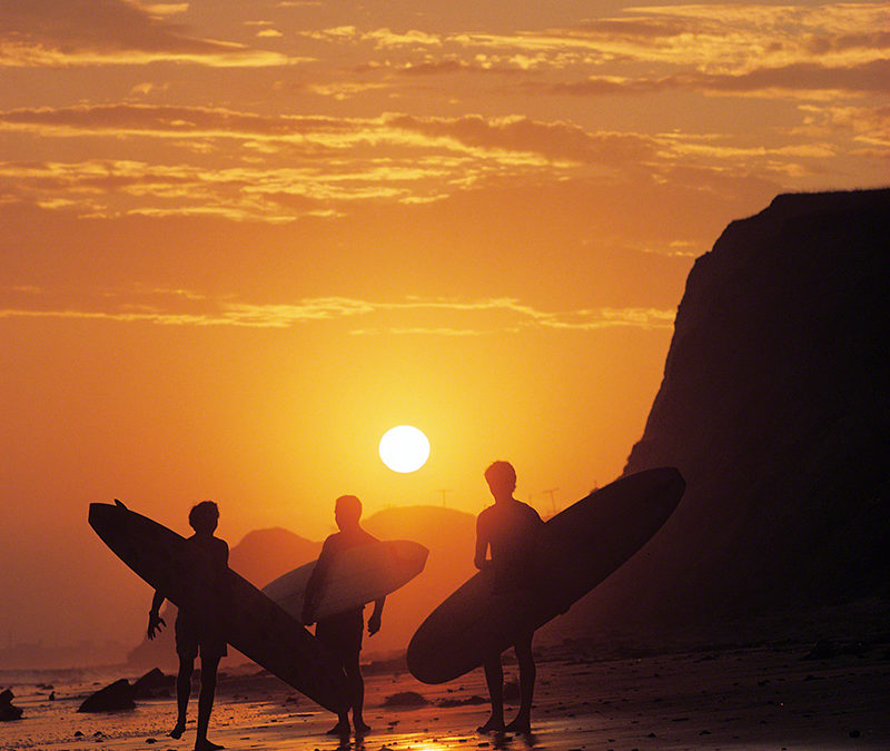 "Harbour Surfboards ""A Retrospective"""